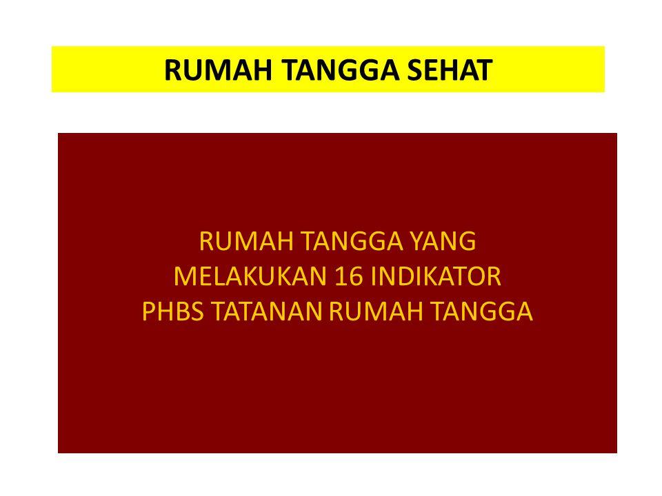 PHBS TATANAN RUMAH TANGGA