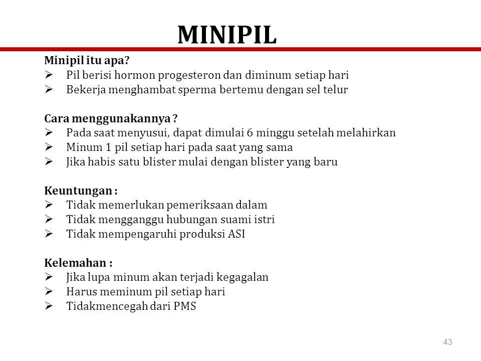 MINIPIL Minipil itu apa