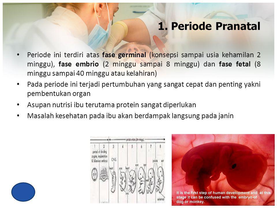1. Periode Pranatal