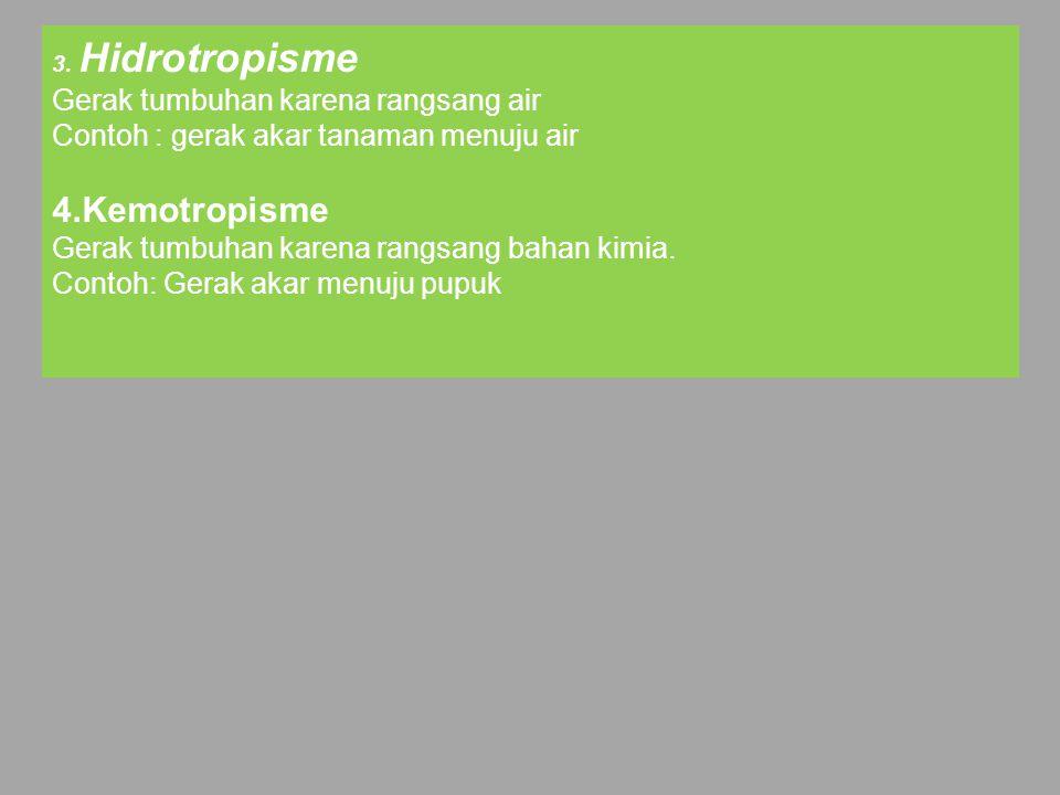 4.Kemotropisme Gerak tumbuhan karena rangsang air