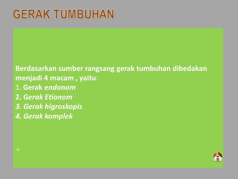 GERAK TUMBUHAN