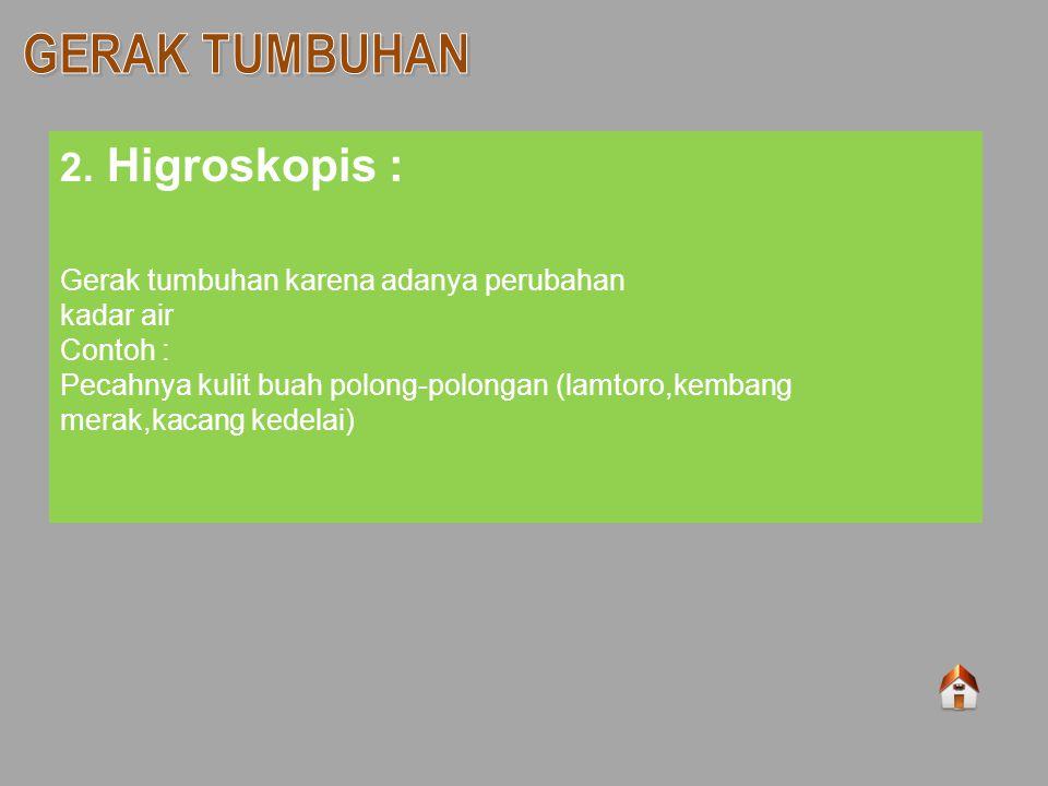 2. Higroskopis : Gerak tumbuhan karena adanya perubahan kadar air