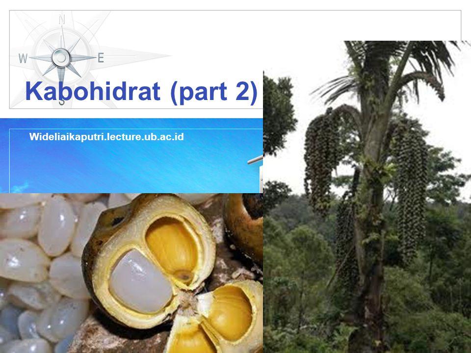 Kabohidrat (part 2) Wideliaikaputri.lecture.ub.ac.id