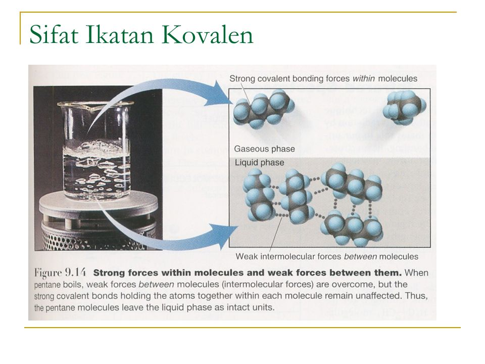 Sifat Ikatan Kovalen