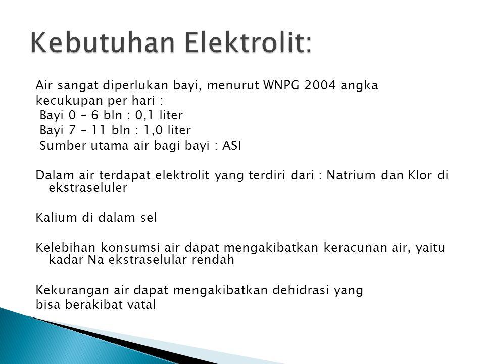 Kebutuhan Elektrolit: