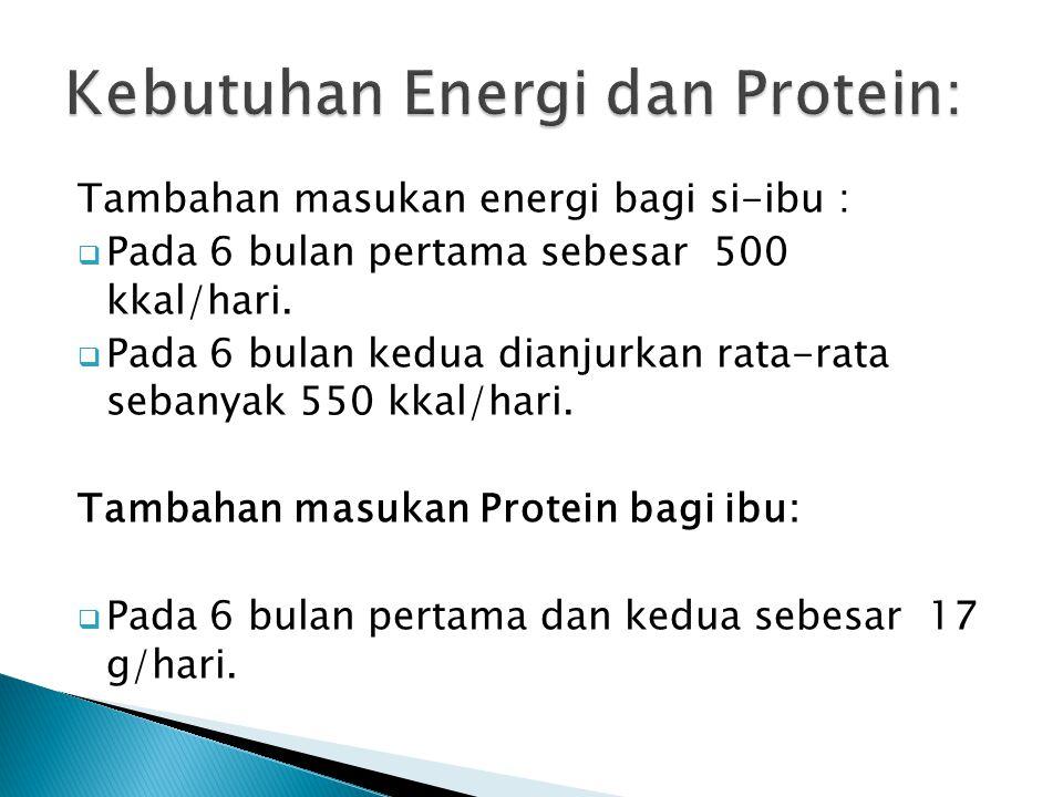 Kebutuhan Energi dan Protein: