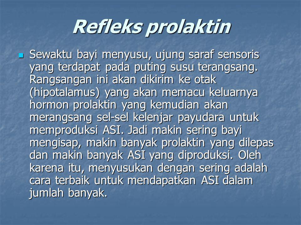 Refleks prolaktin