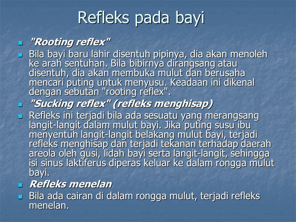 Refleks pada bayi Rooting reflex