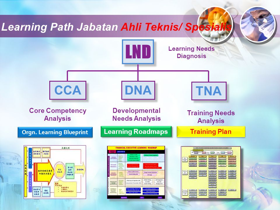 LND CCA DNA TNA Learning Path Jabatan Ahli Teknis/ Spesialis