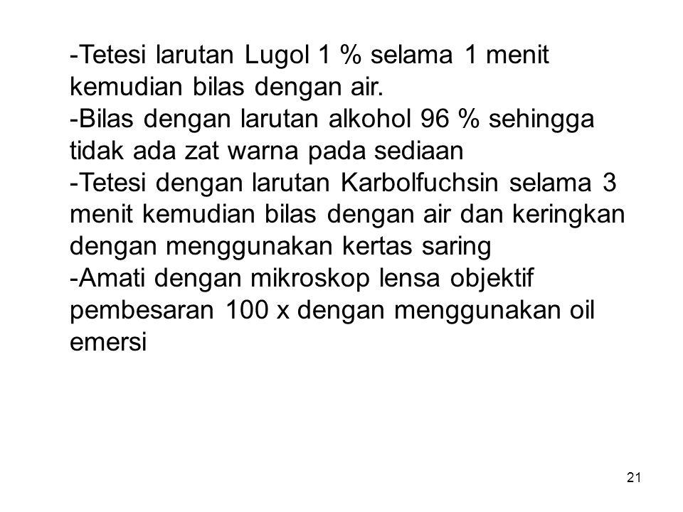 Tetesi larutan Lugol 1 % selama 1 menit kemudian bilas dengan air.