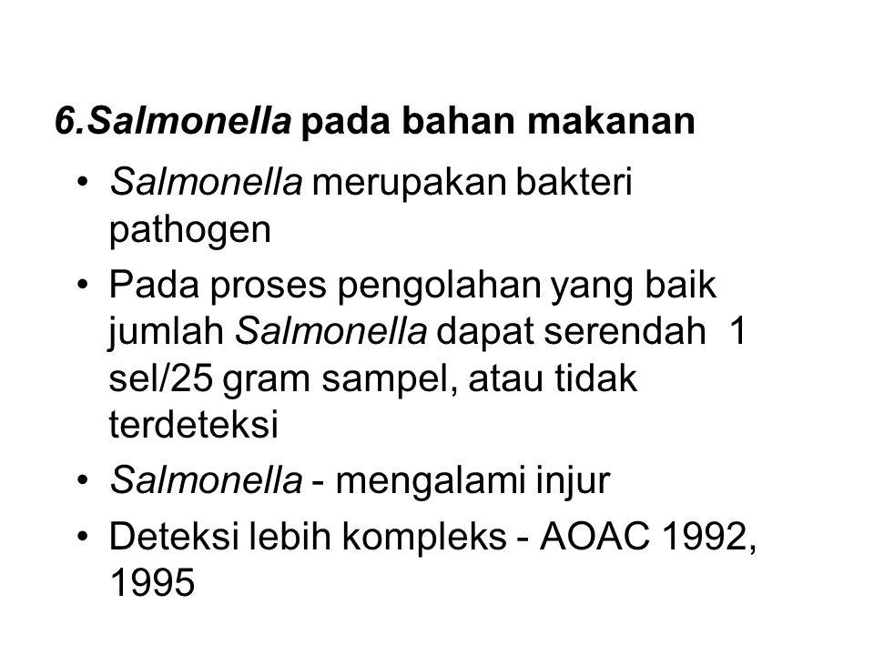 6.Salmonella pada bahan makanan