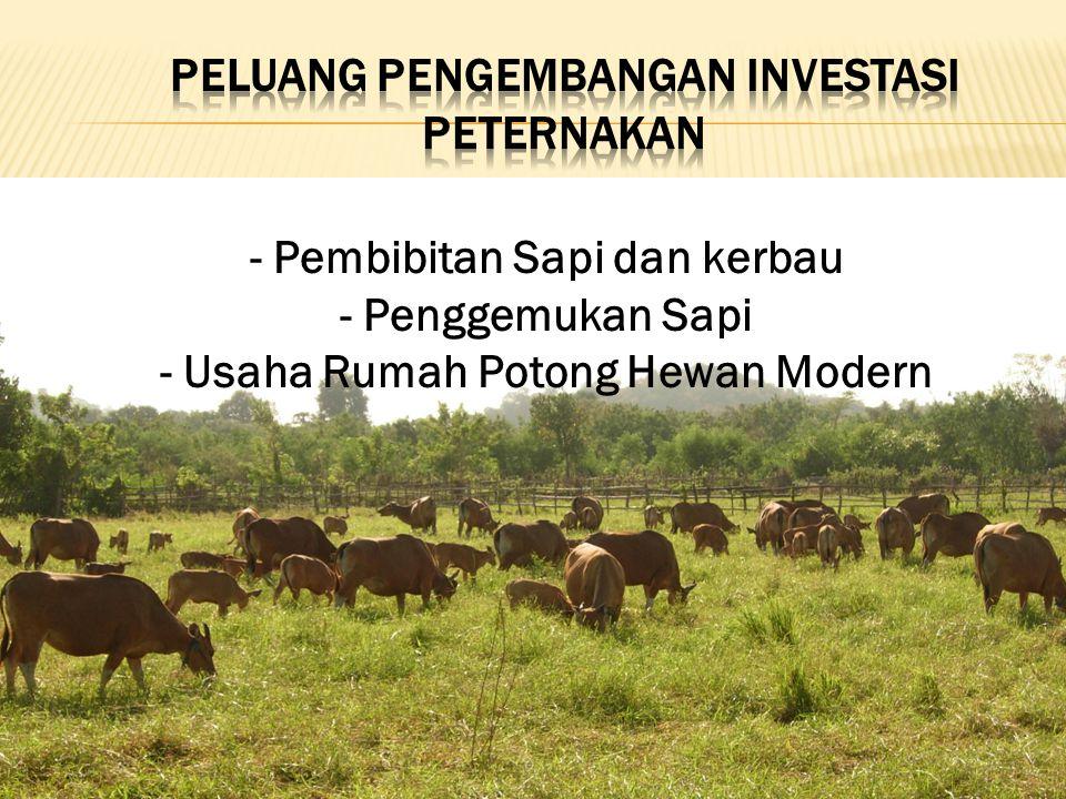 Peluang pengembangan investasi peternakan