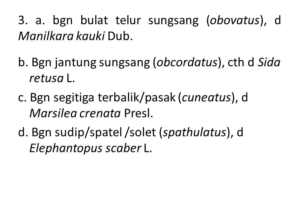 3. a. bgn bulat telur sungsang (obovatus), d Manilkara kauki Dub.