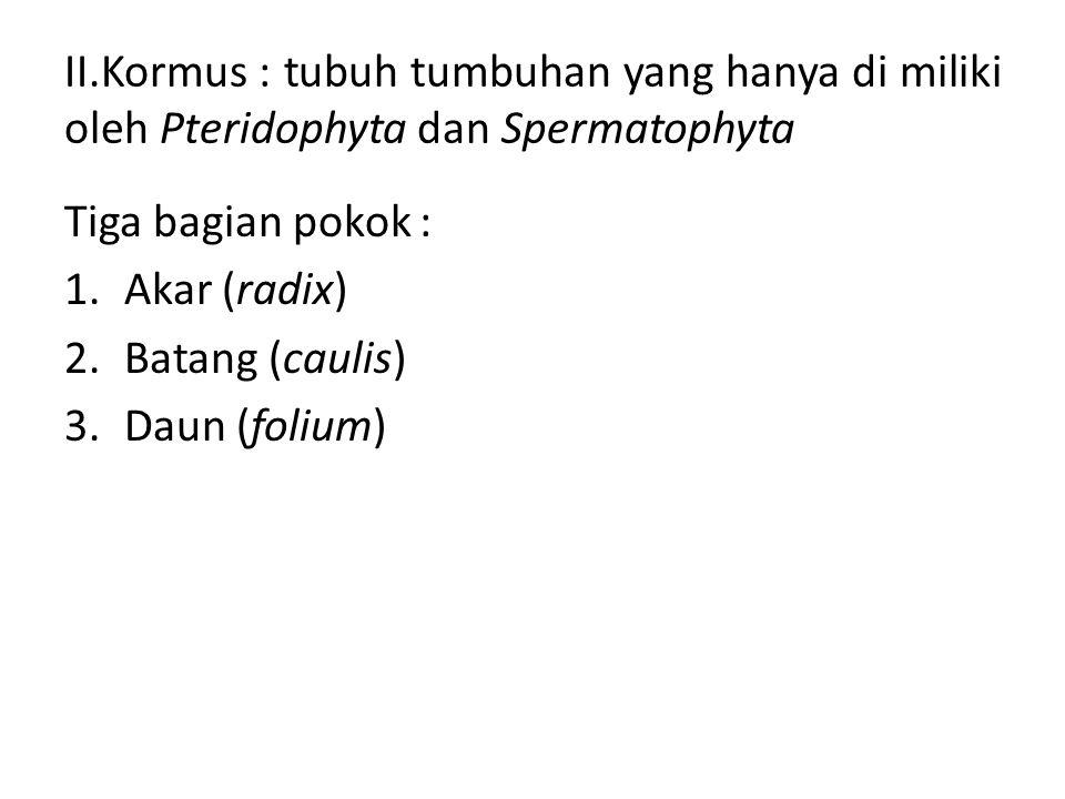 II.Kormus : tubuh tumbuhan yang hanya di miliki oleh Pteridophyta dan Spermatophyta