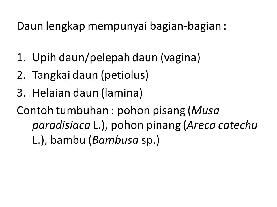 Daun lengkap mempunyai bagian-bagian :