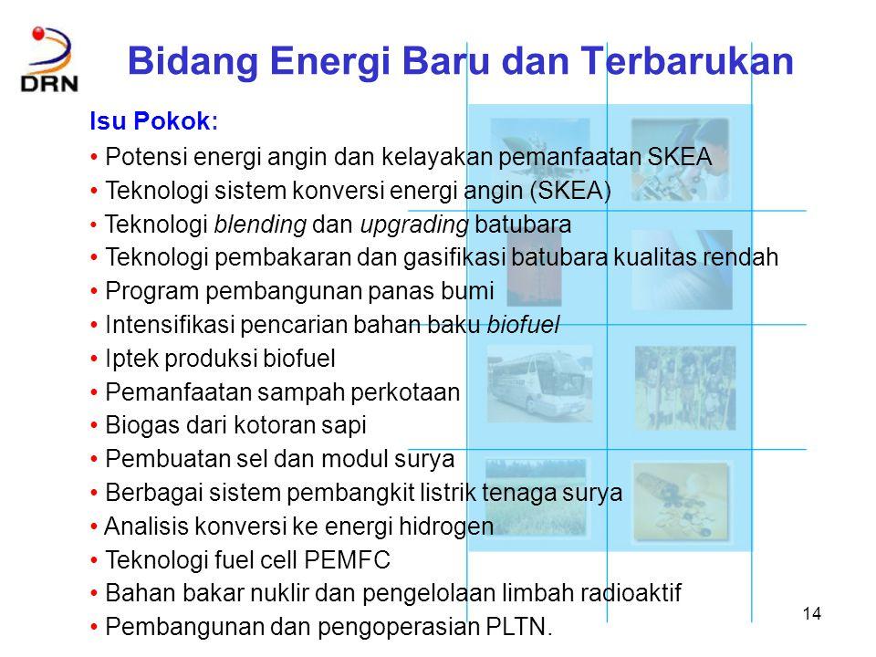 Bidang Energi Baru dan Terbarukan