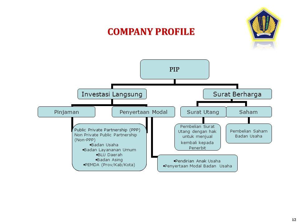 COMPANY PROFILE 12