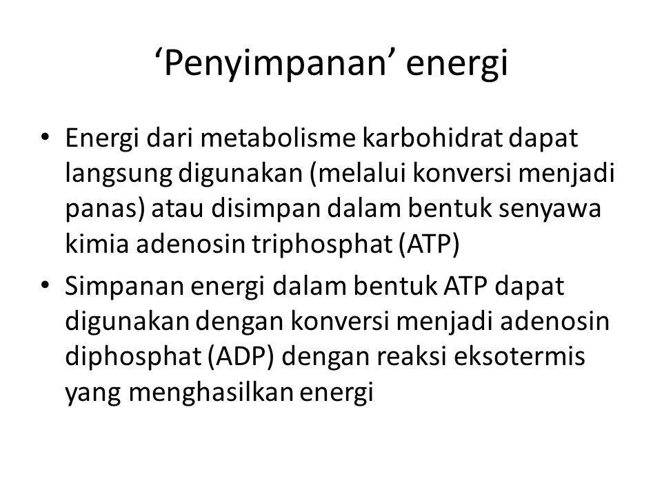 'Penyimpanan' energi