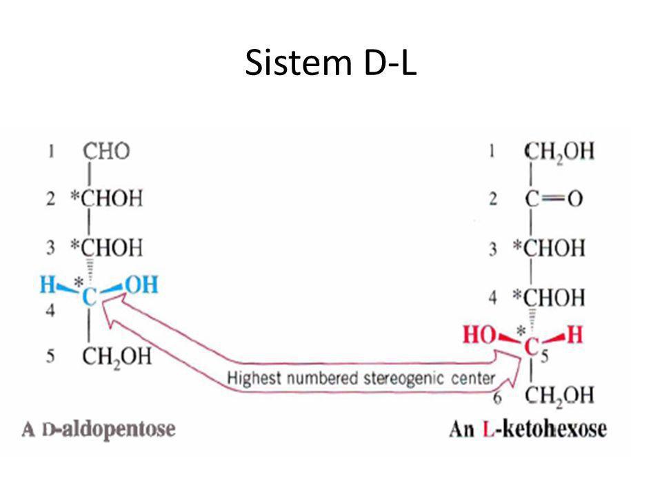Sistem D-L