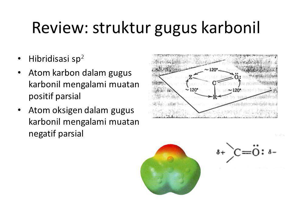 Review: struktur gugus karbonil