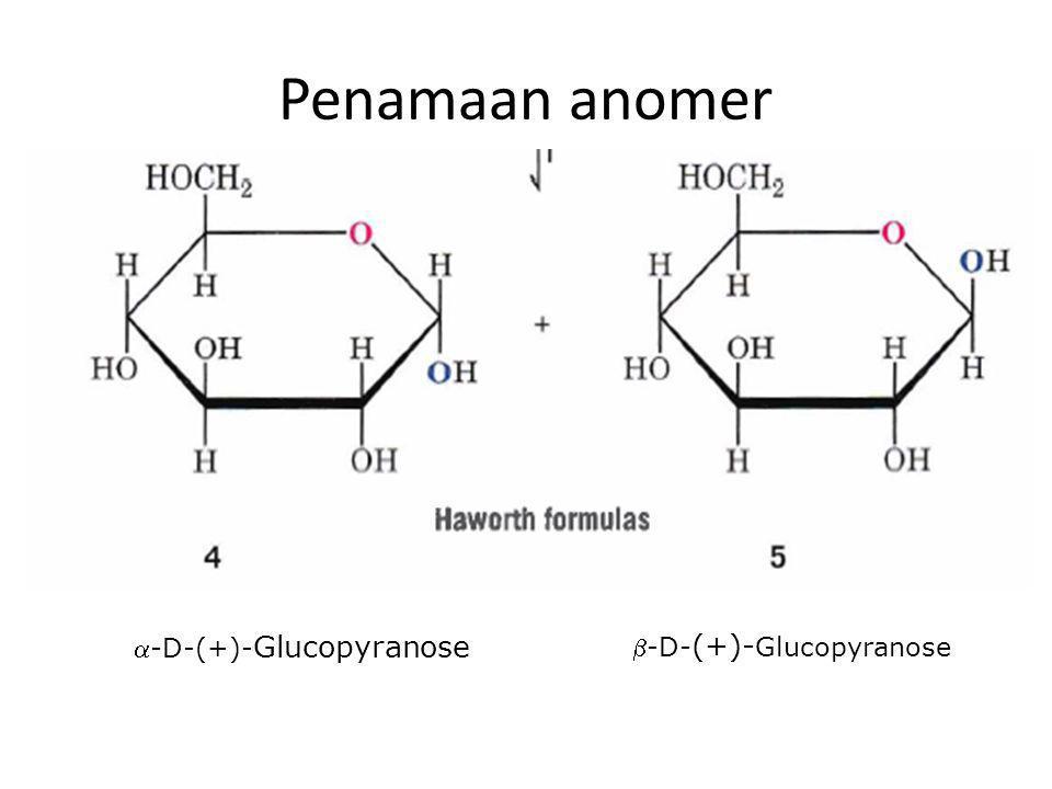 Penamaan anomer -D-(+)-Glucopyranose -D-(+)-Glucopyranose