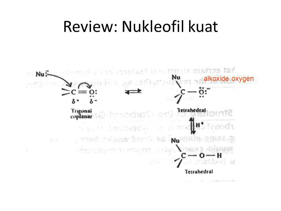 Review: Nukleofil kuat
