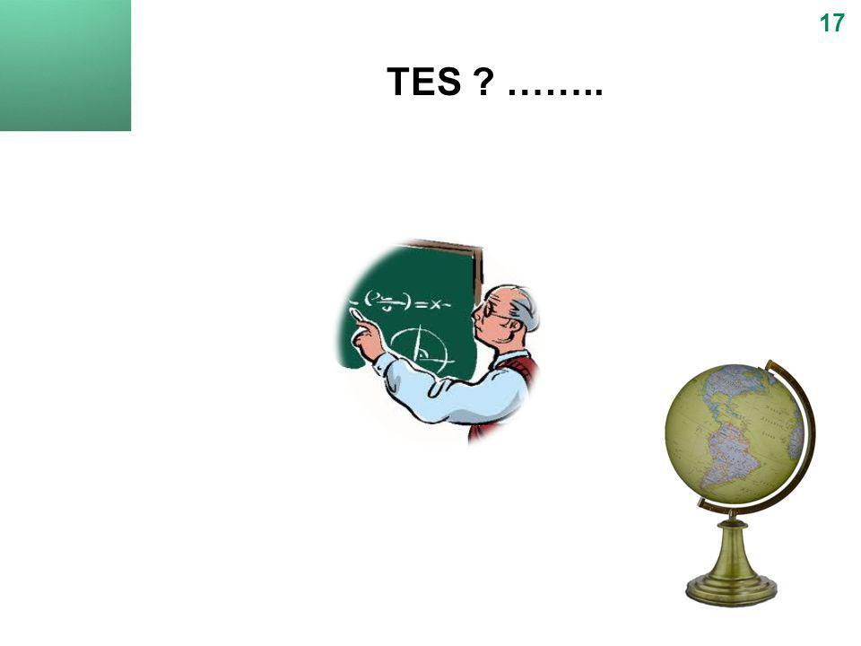 17 TES ……..