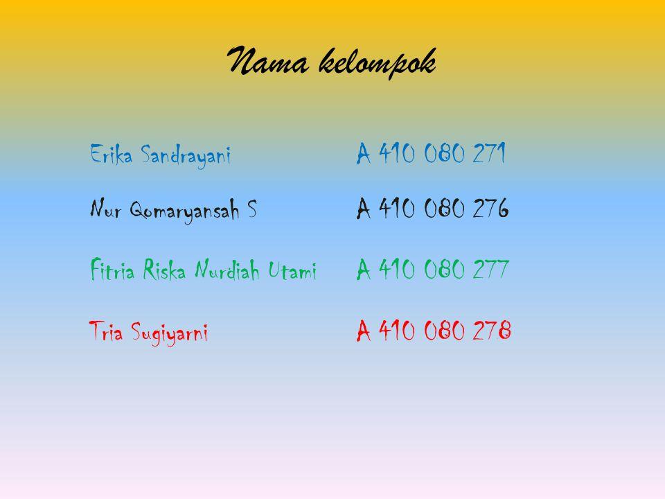 Nama kelompok Erika Sandrayani A 410 080 271
