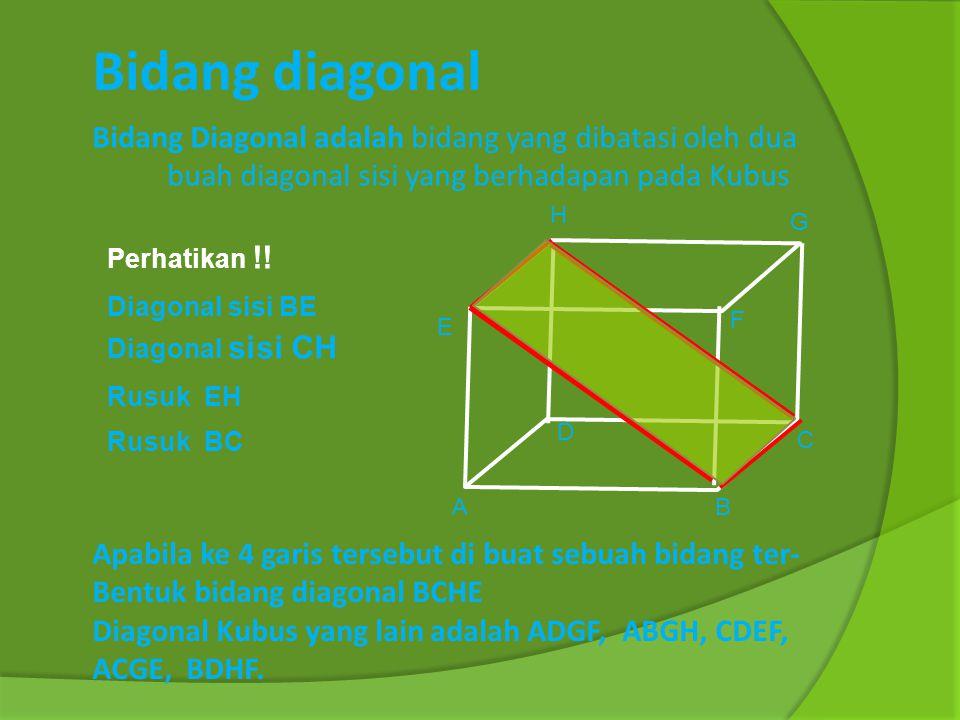 Bidang diagonal Bidang Diagonal adalah bidang yang dibatasi oleh dua buah diagonal sisi yang berhadapan pada Kubus.