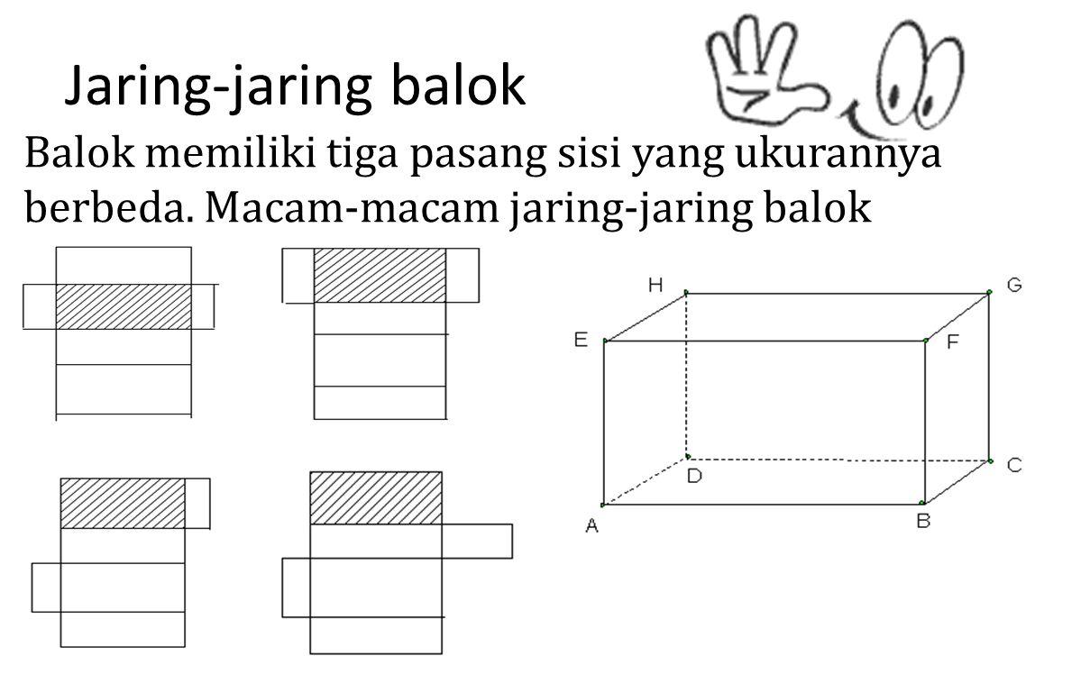 Jaring-jaring balok Balok memiliki tiga pasang sisi yang ukurannya berbeda.