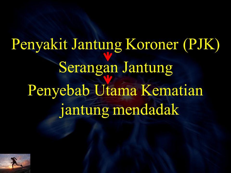 Penyakit Jantung Koroner (PJK) Serangan Jantung Penyebab Utama Kematian jantung mendadak