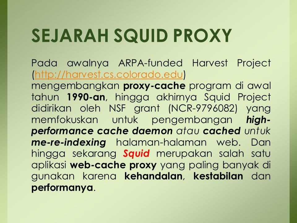 SEJARAH SQUID PROXY