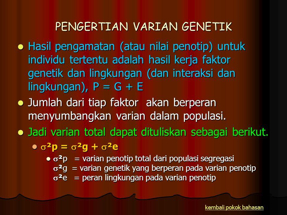 PENGERTIAN VARIAN GENETIK