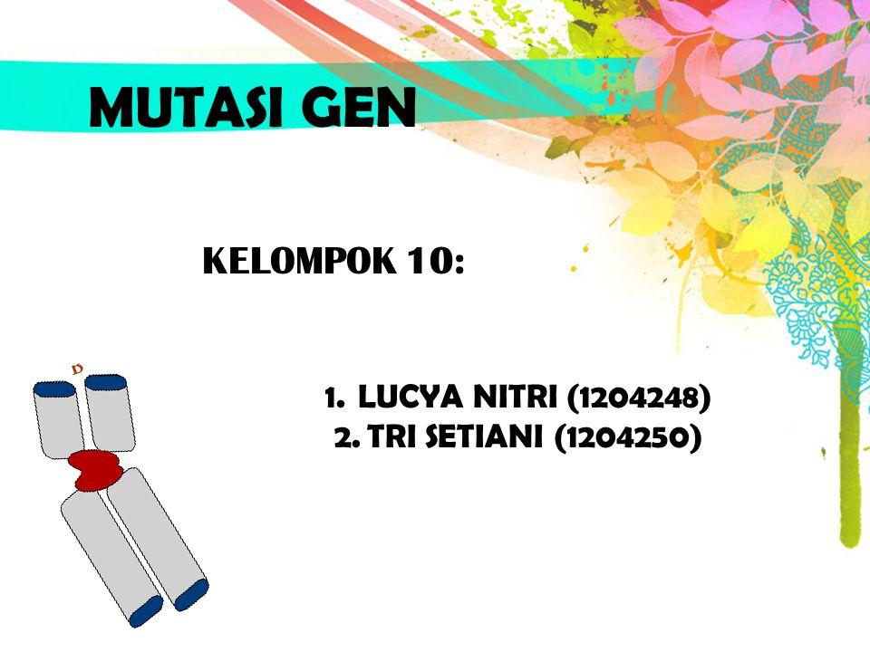 MUTASI GEN KELOMPOK 10: LUCYA NITRI (1204248) TRI SETIANI (1204250)