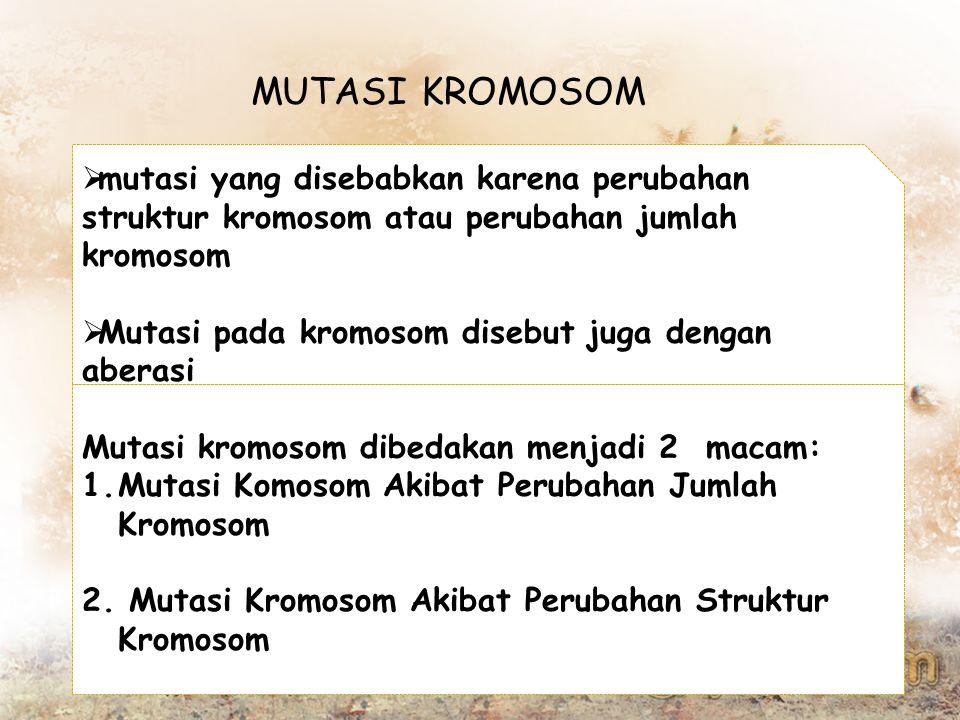 MUTASI KROMOSOM mutasi yang disebabkan karena perubahan struktur kromosom atau perubahan jumlah kromosom.