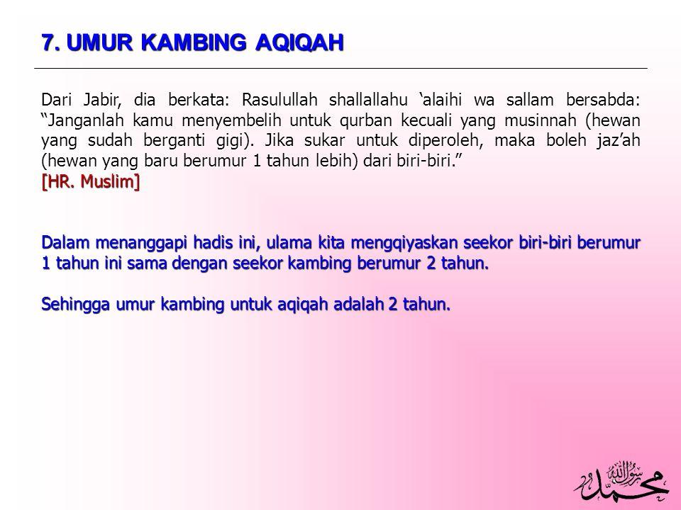 7. UMUR KAMBING AQIQAH