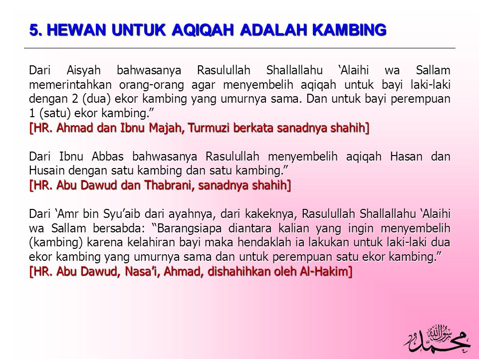 5. HEWAN UNTUK AQIQAH ADALAH KAMBING
