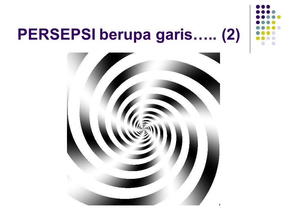 PERSEPSI berupa garis….. (2)