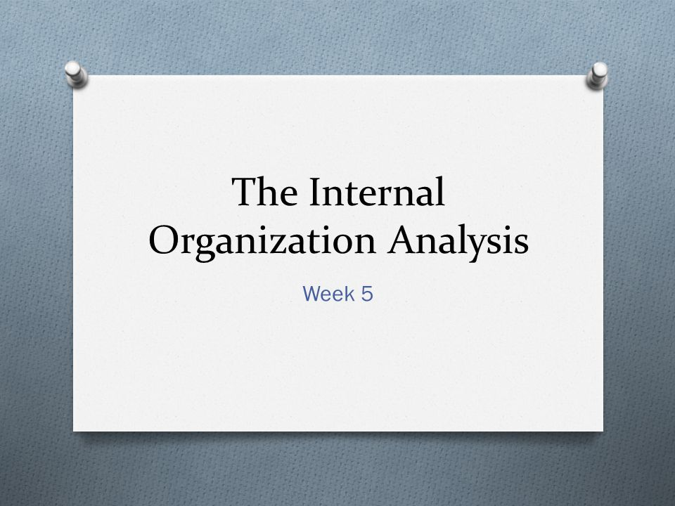 The Internal Organization Analysis