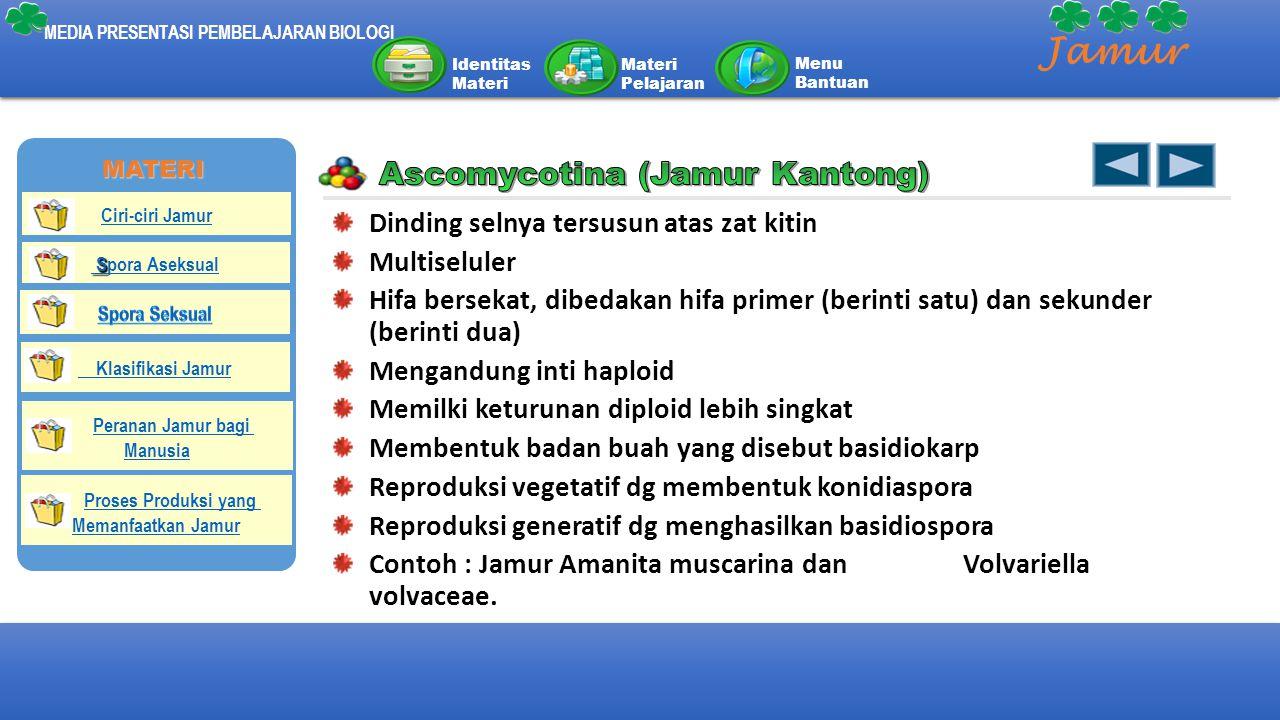 Jamur Ascomycotina (Jamur Kantong)