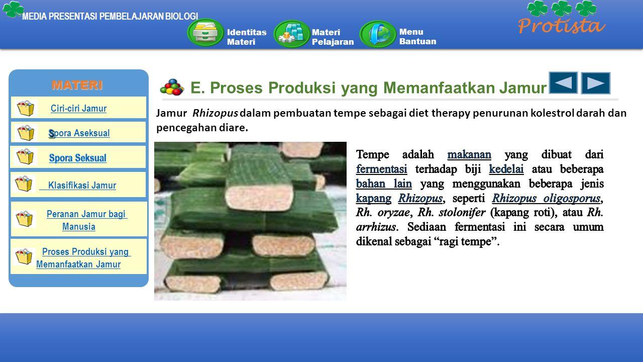 Protista E. Proses Produksi yang Memanfaatkan Jamur MATERI
