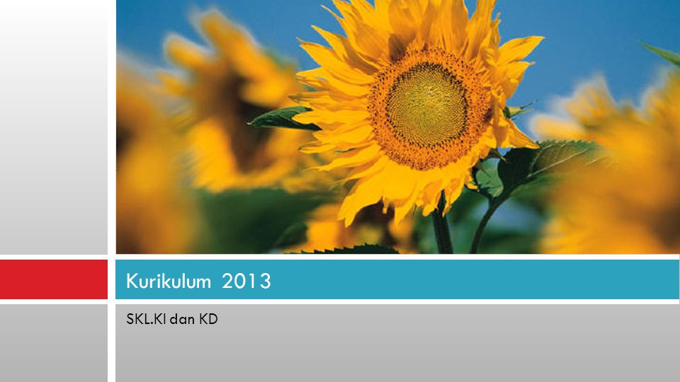 Kurikulum 2013 SKL.KI dan KD