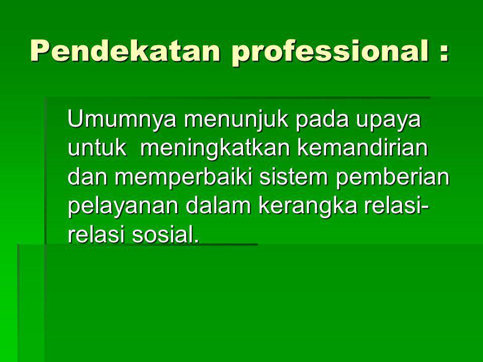 Pendekatan professional :