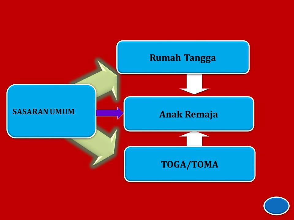 Rumah Tangga Anak Remaja TOGA/TOMA