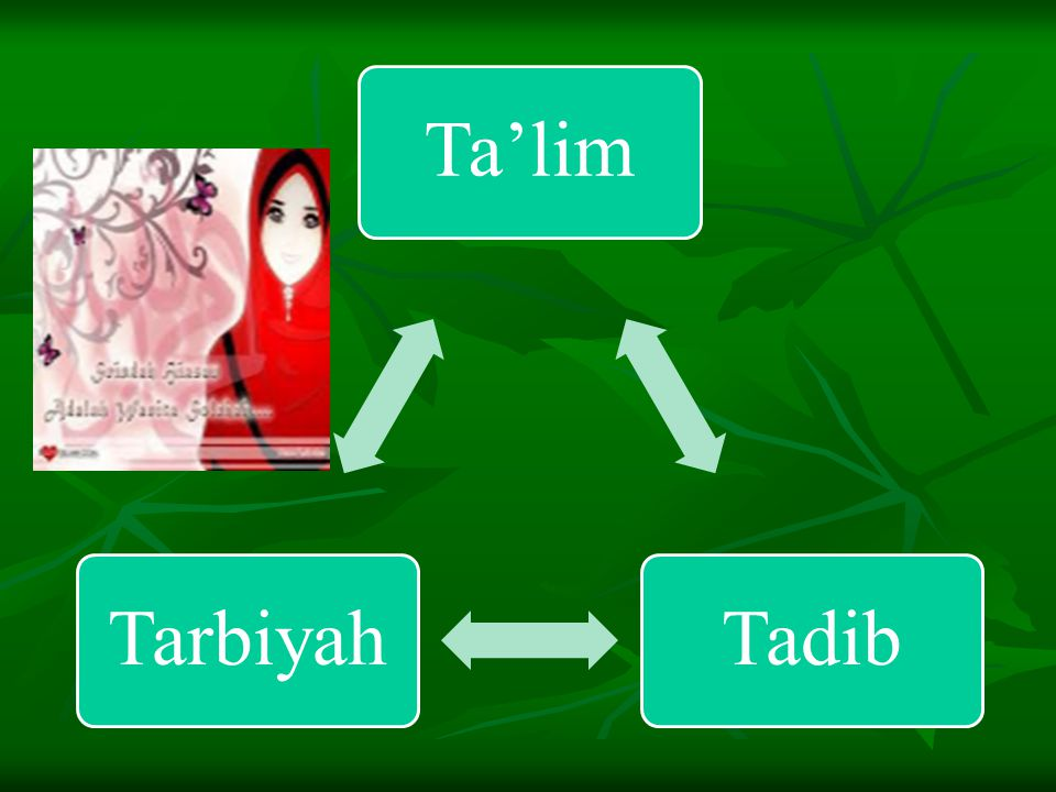 Ta'lim Tadib Tarbiyah