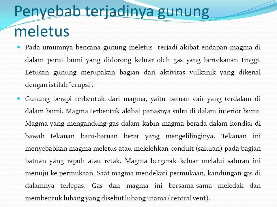 meletus essay