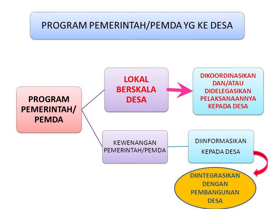 PROGRAM PEMERINTAH/ PEMDA LOKAL BERSKALA DESA