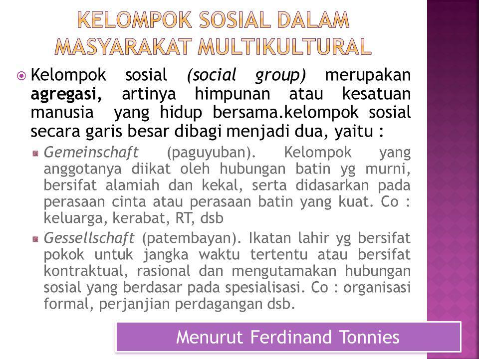 Kelompok sosial dalam masyarakat multikultural