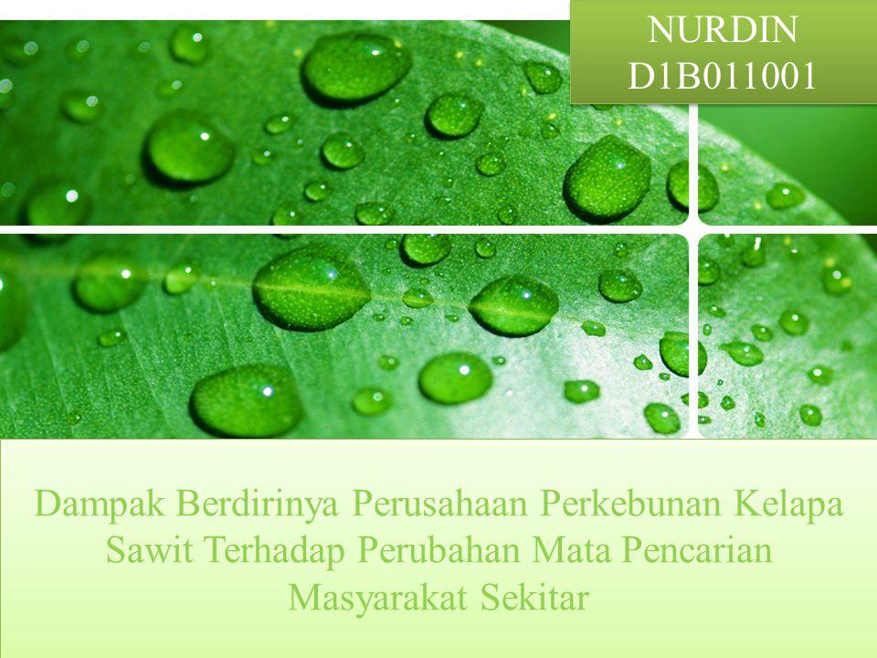 NURDIN D1B011001.