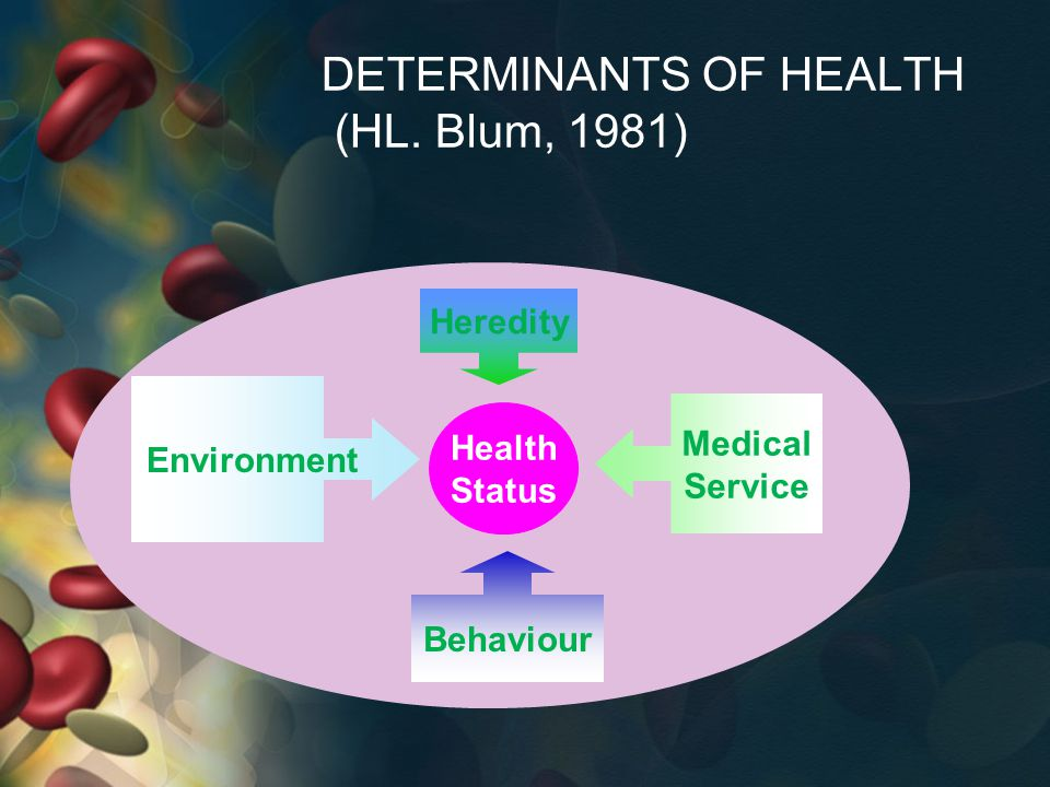 DETERMINANTS OF HEALTH (HL. Blum, 1981)